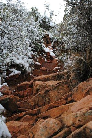 Bear Mountain Trail:                   On the trail (steep)                 
