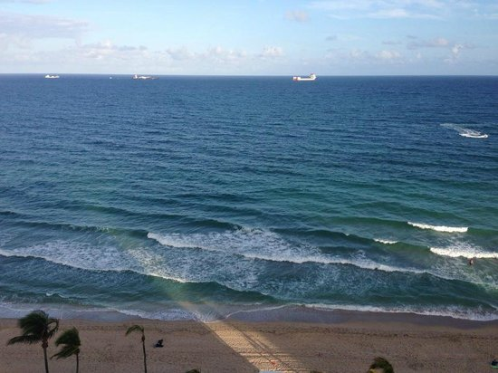 The Westin Beach Resort, Fort Lauderdale:                   View of the ocean from the room.