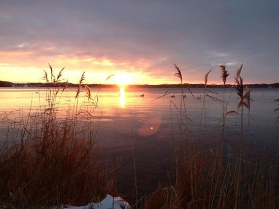 Plon, Jerman:                   Südwestlicher Teil des Großen Plöner See- Januar 2013