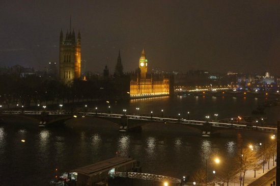 Park Plaza Riverbank London:                   From our room
