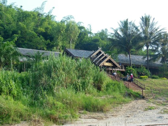Luang Say Lodge: the lodges are hidden between the trees