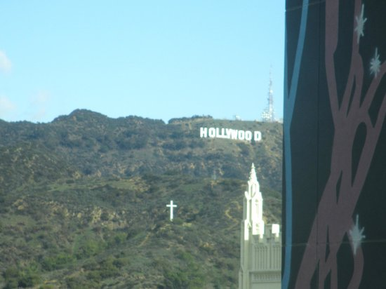 Loews Hollywood Hotel:                   view