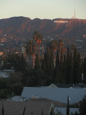 Hollywood Historic Hotel:                   l'hollywood sign visto dalla camera