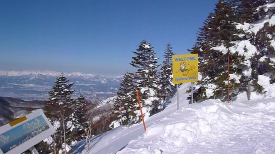 Shiga Kogen Prince Hotel:                   The view from the hill