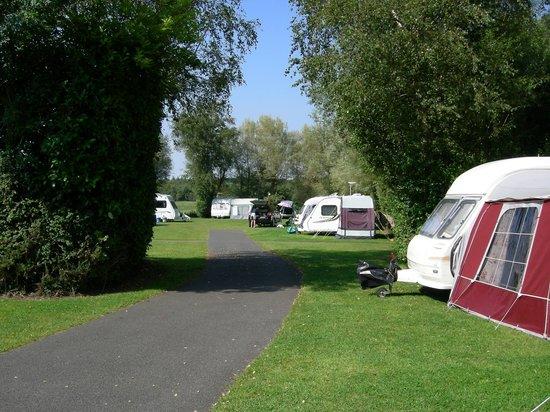 Whitemead Caravan Park: Middle field