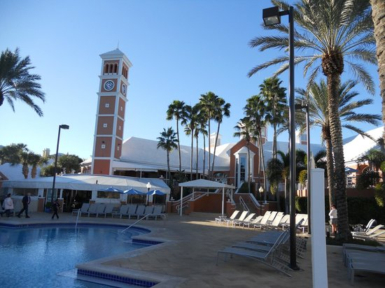 Hilton Grand Vacations at SeaWorld:                   Just a view from the pool