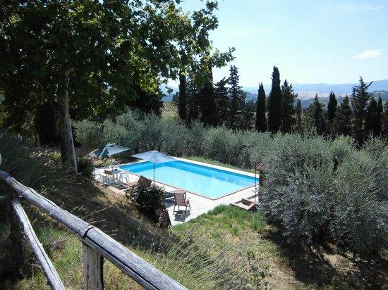 Podere Borgaruccio:                   piscina