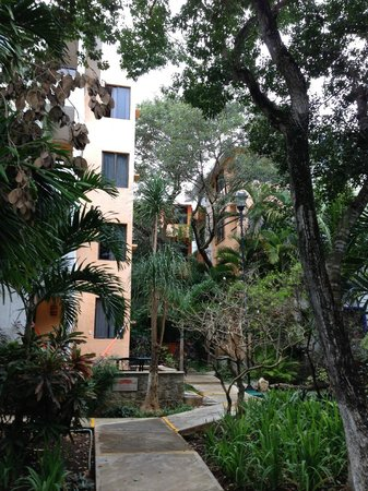 Real Playa del Carmen:                   A look at building #1 where I stayed