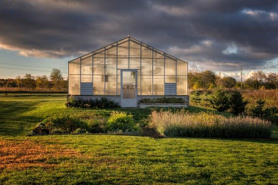 The Waring House: Greenhouse