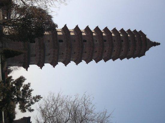 Twin Pagoda Temple (Shuangta si): pagoda