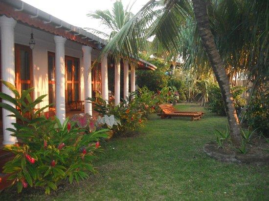 Octopus Garden House: Front Garden