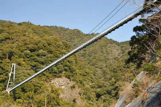 Aya Suspension Bridge :                   したから眺めると