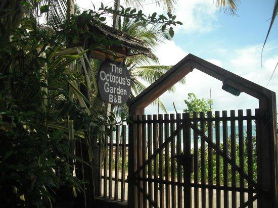 Octopus Garden House: Gate & Entrance