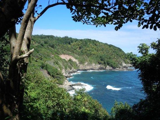The Carib Territory : Scenic view