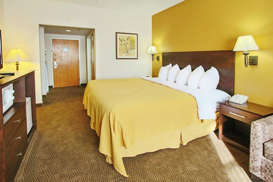 Quality Inn Conference Center Citrus Hills: Silgle King Room