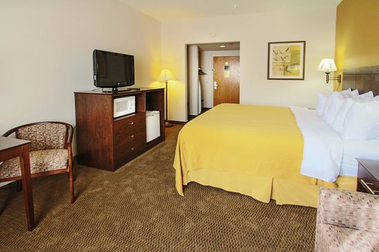 Quality Inn Conference Center Citrus Hills: Room with flat screen TV, free wi-fi, and more