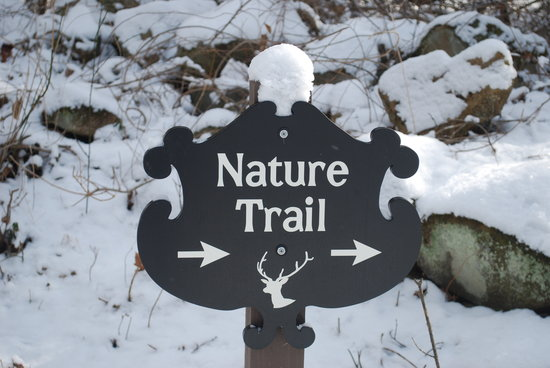 Shadow Mountain Escape : Winter on the Nature Trail