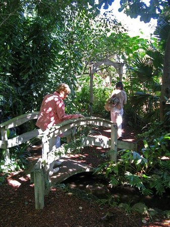Mounts Botanical Garden:                   The hammock trail is a sweet discovery...