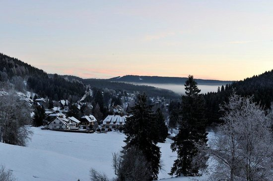 Landhotel Bierhäusle: view from the breakfast room