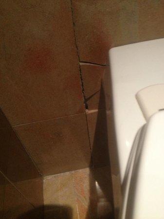 Select Hotel: Mattonella rotta dietro il water
