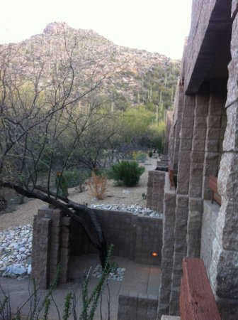 Loews Ventana Canyon Resort:                   Another view from our room