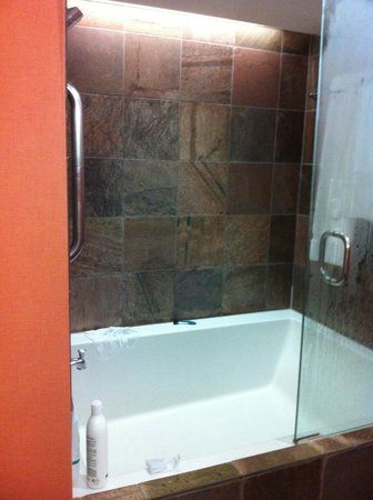 Loews Ventana Canyon Resort:                   HUGE tub/shower combo