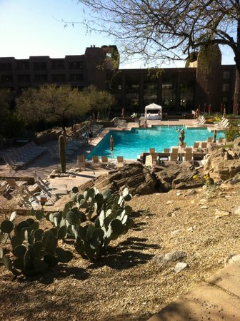 Loews Ventana Canyon Resort:                   Pool area from the Resort's Canyon trails