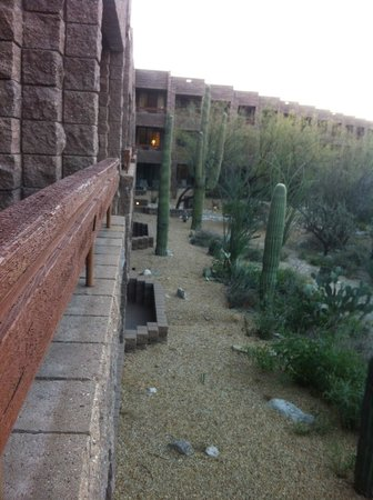 Loews Ventana Canyon Resort :                   Resort Grounds