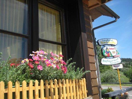 Landhotel Bierhäusle: windows