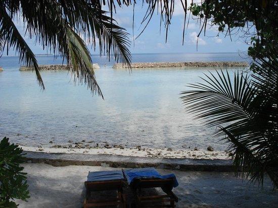 Ellaidhoo Maldives by Cinnamon:                   вид из бунгало