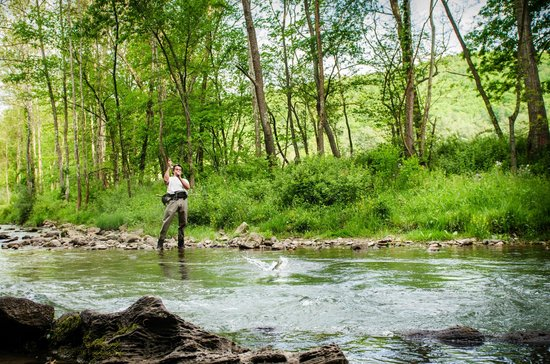 Natural Retreats Homestead Preserve: Fly Fishing on the Jackson River