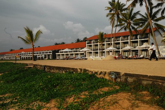 The Surf Hotel:                   Hotel