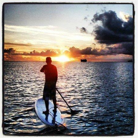 SurfSUP Paddleboarding: Sunset paddle