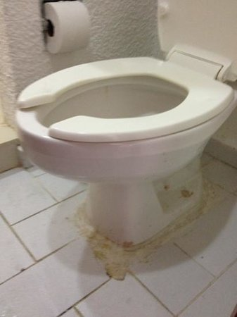 Hotel Dos Playas Beach House:                   are very clean toilet . Not!