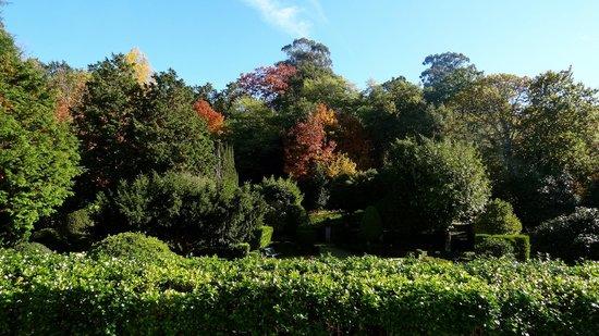 Pousada Mosteiro Guimarães: Garten