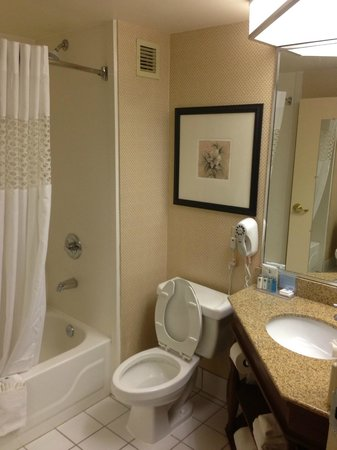 Hampton Inn Burlington/Mt. Holly:                   Standard Bathroom
