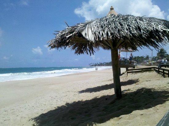 Maleleo Bed & Breakfast:                   Cadeiras e barracas para os hóspedes na praia