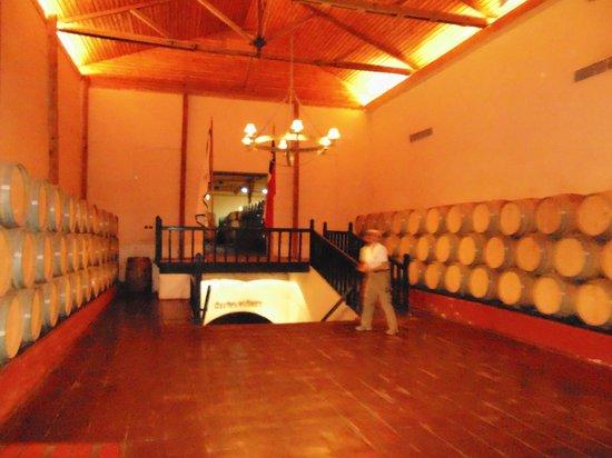 Hostal Providencia:                   Vinícola....mais um passeio fechado com agencia de turismo local e intermédio