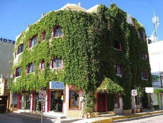 Photo of Hotel Delfin Playa del Carmen