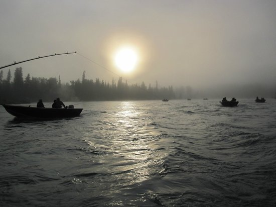 ACE Fishing Adventures : Early morning bliss on the Kenai River
