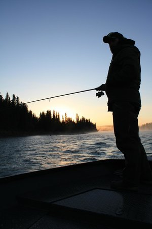 ACE Fishing Adventures: ACE Fishing Advnetures favorite time of the year on the Kenai