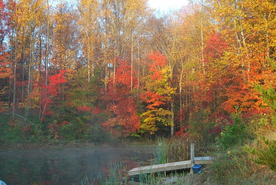 Four Seasons Cabins: Fall at the pond