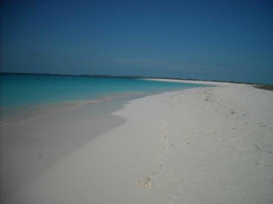 playa sirena 2013