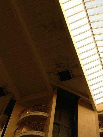 希爾頓大使套房飯店 - 奧蘭多國際大道會議中心照片