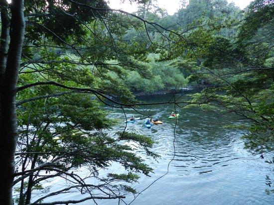 Lodge Bosque Encantado: Rio Fuy - pasa junto al pueblo de Neltume
