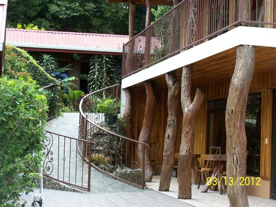 Monteverde Rustic Lodge:                   Hotel and grounds