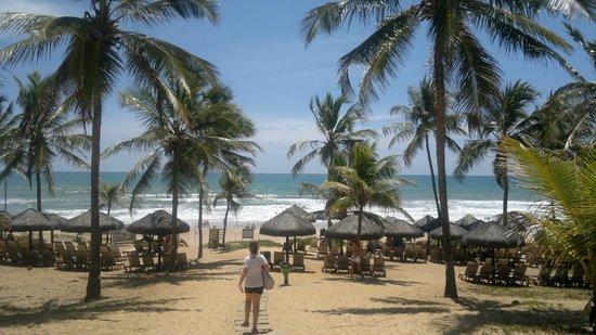 Grand Palladium Imbassaí Resort & Spa:                   Playa del hotel