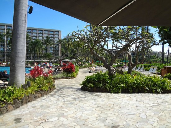 Kukui's Restaurant and Bar :                   view