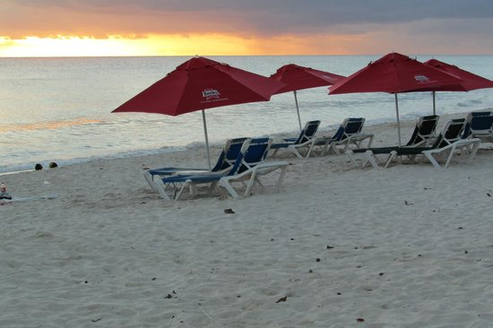 Michelin Apartments:                   Dover Beach rent 2 chairs and an umbrella for $10US per day