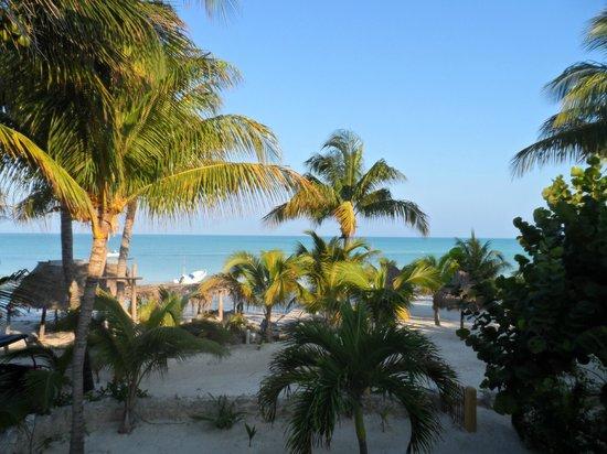 Amaité Hotel & Spa:                   vista desde la habitación